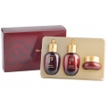 The History of Whoo Jinyulhyang Jinyul Special Set (3 Items)